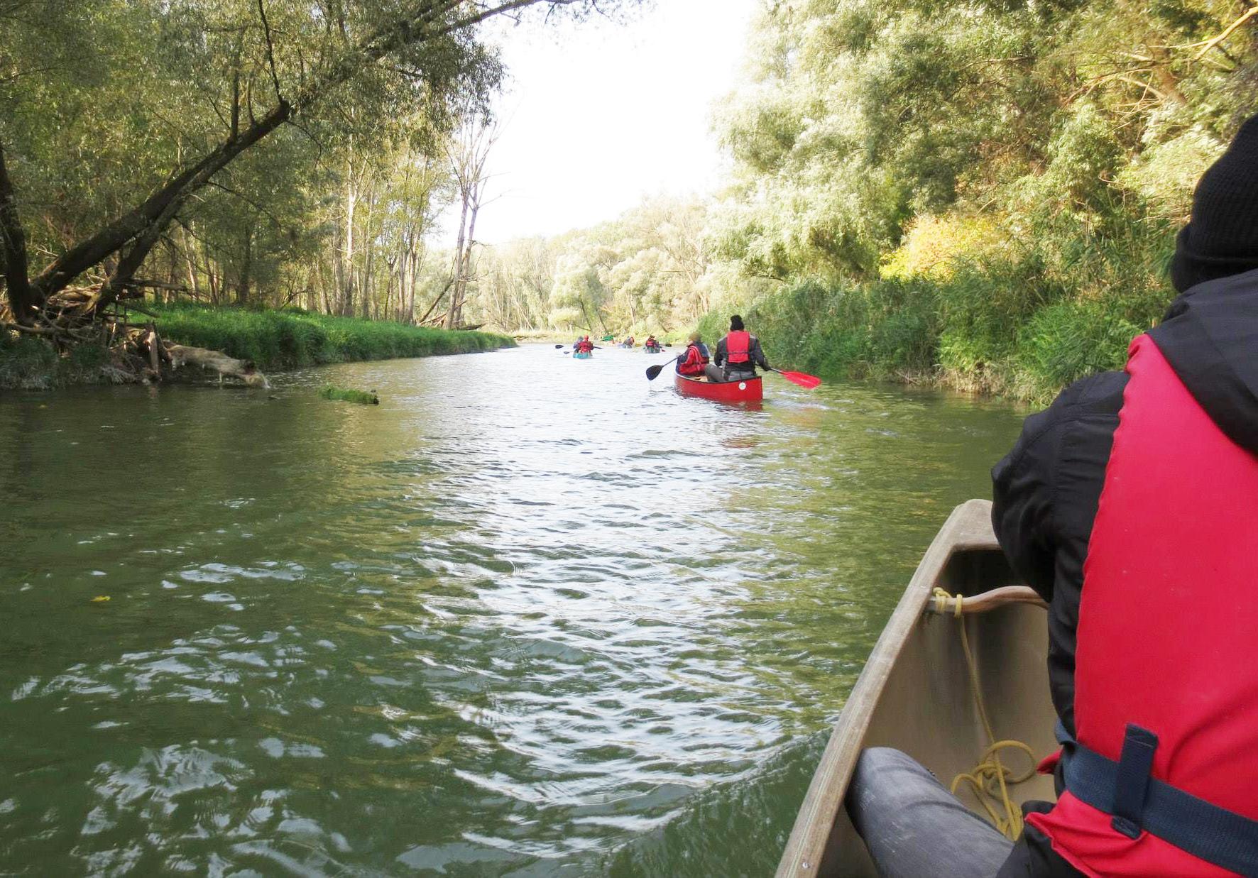 Aktionstage 2013_85_Wasserwege - Paddeltour durch die Stockerauer Au_1