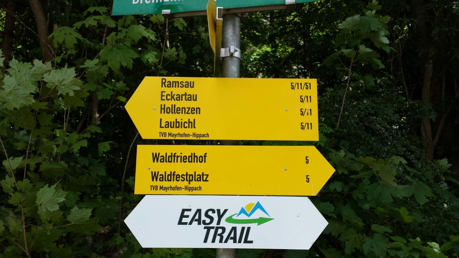 Entdeckertour durch den Scheulingwald 1