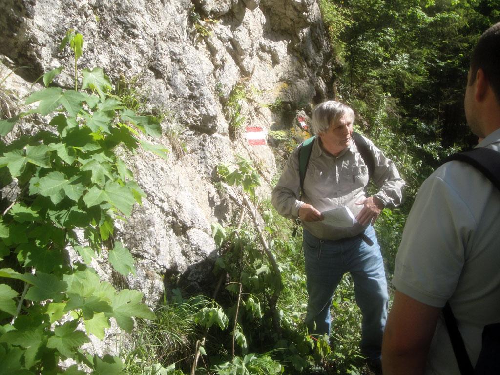 Die Spitzenbachklamm – Einblick in geologische Vorgänge 4