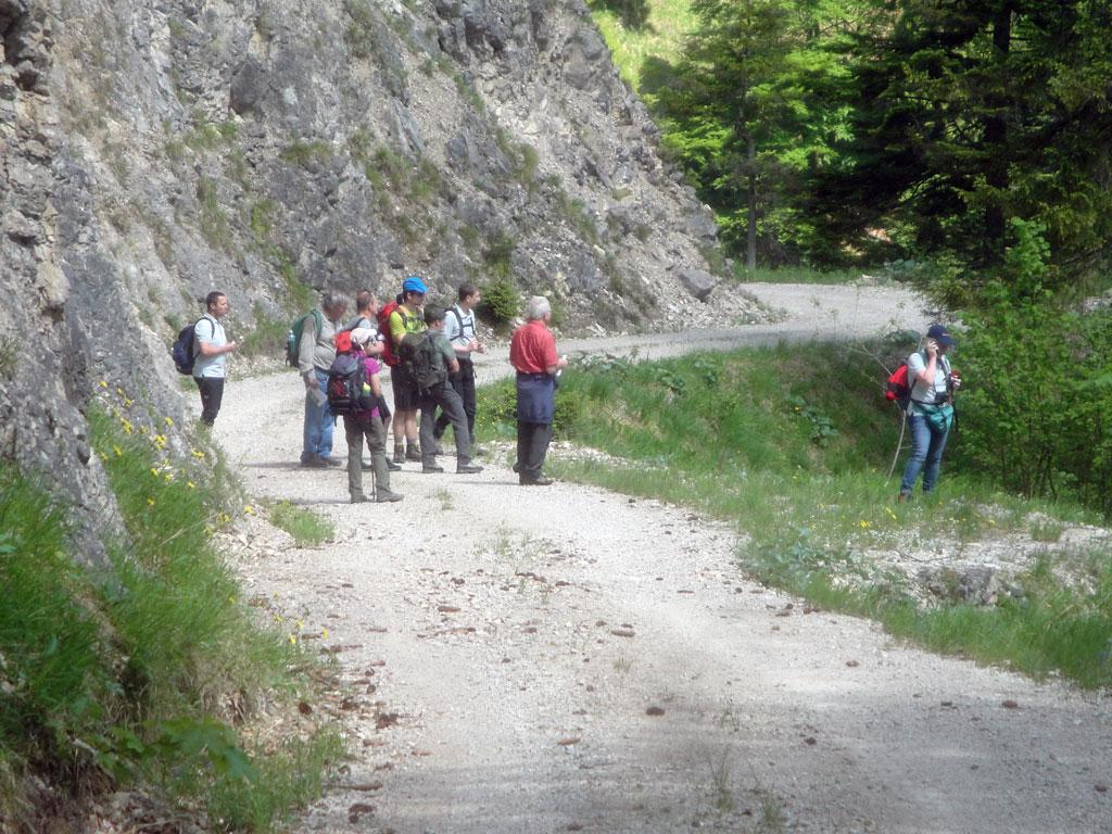 Die Spitzenbachklamm – Einblick in geologische Vorgänge 1
