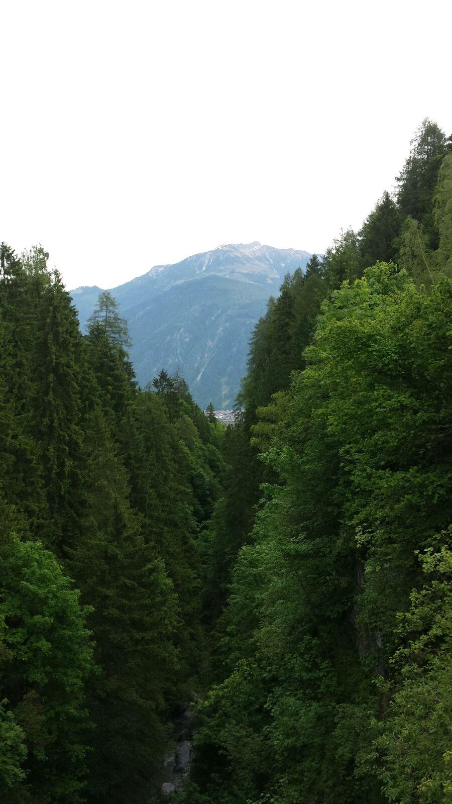 Idyllischer Streifzug durch einen sagenhaften Schluchtenwald 2