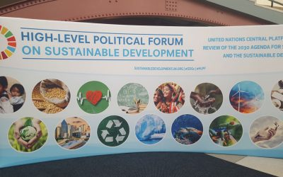 HLPF and SDGs – what's that?