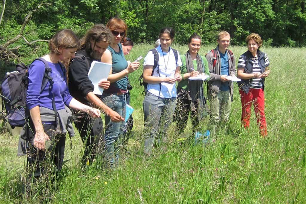 Aktionstage-Nachhaltigkeit_2015_NÖ_2015-05-30_NÖ_Stockerau_Wiesentypen-OstÖsterreichs_Theodora-Höger_©_BMLFUW