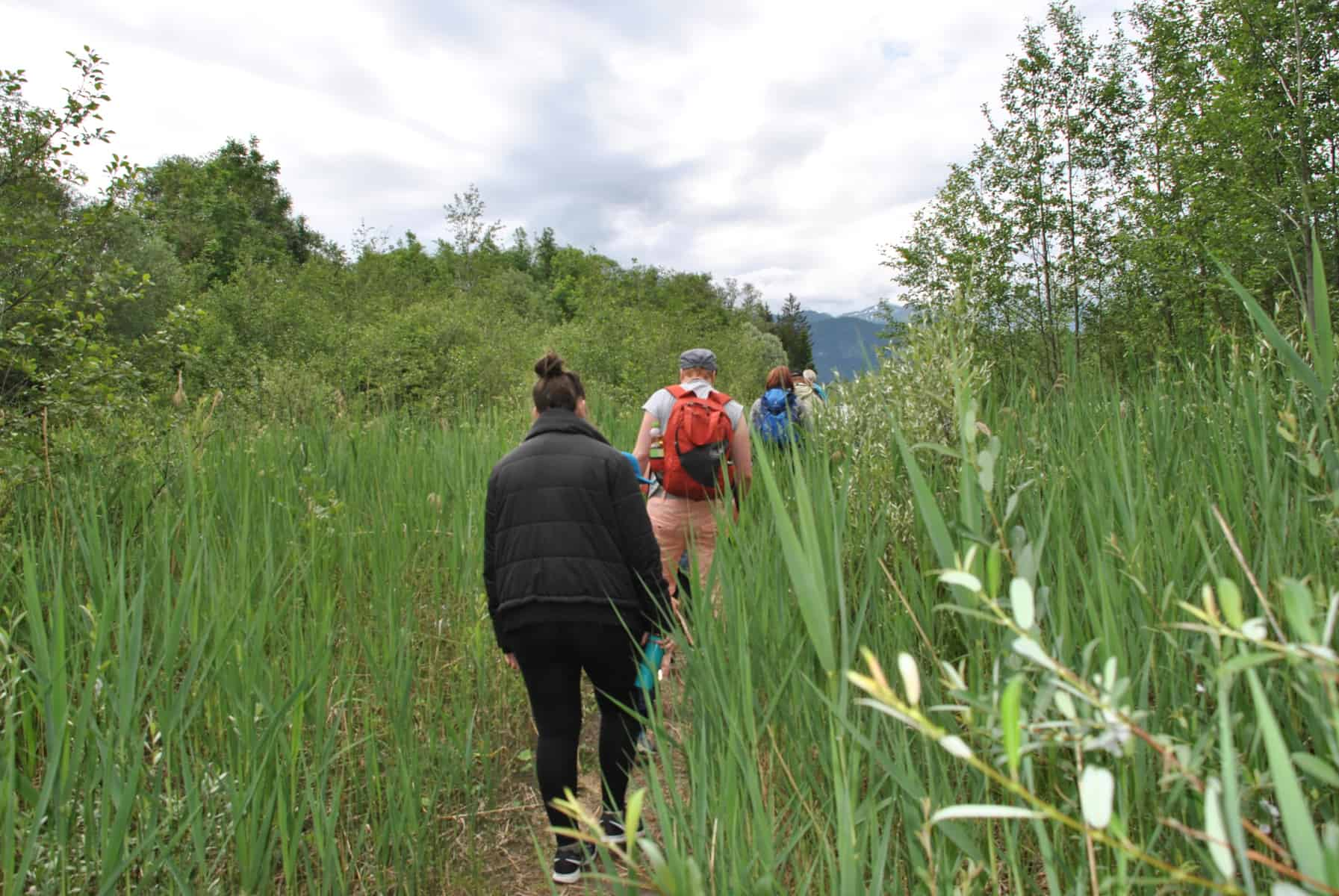 Lebendiger Lebensraum - Im Naturpark Tiroler Lech zur Auwald-Safari 9