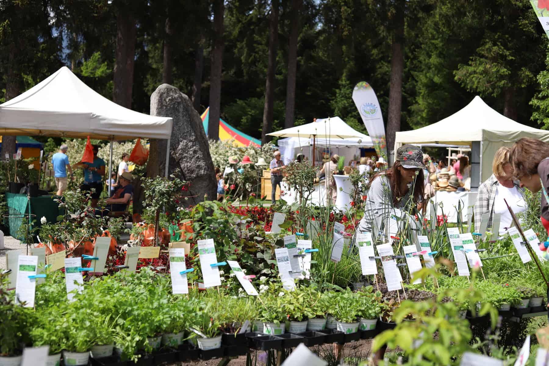 Den Garten neu sehen - Blühende Träume, eine Messe für naturnahe Gartengestaltung 8