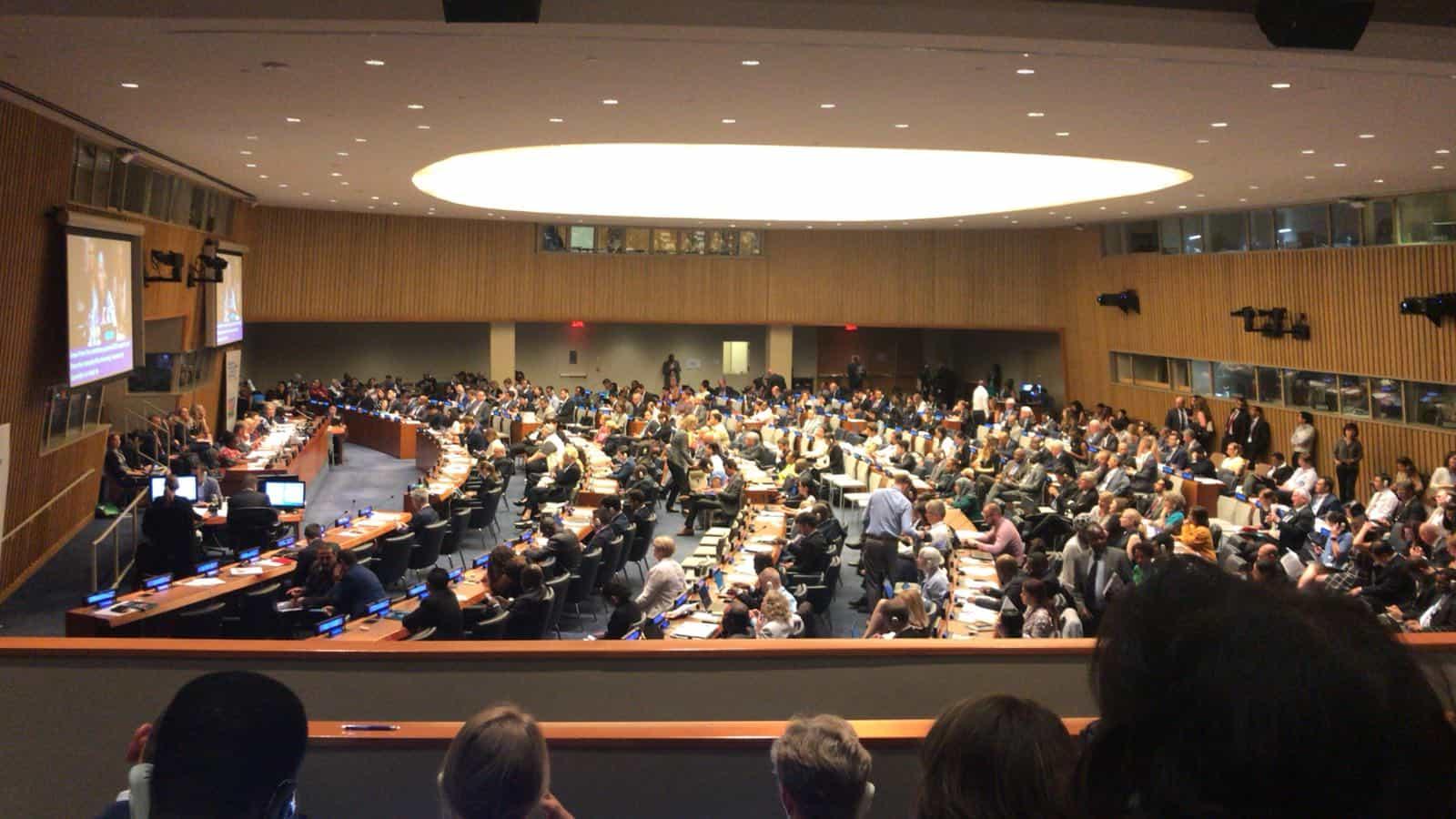 Als Jugendbotschafterin für UN-Kinderrechte und SDGs in New York 2