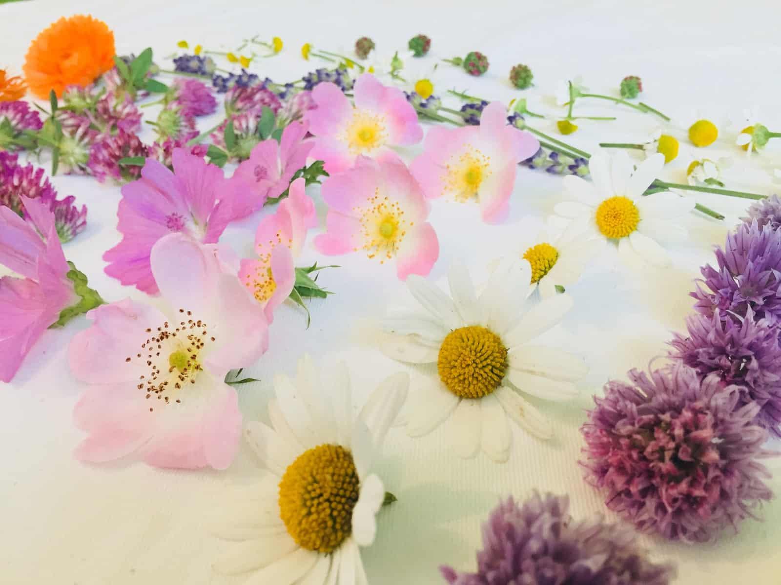 Kreative Blütenküche