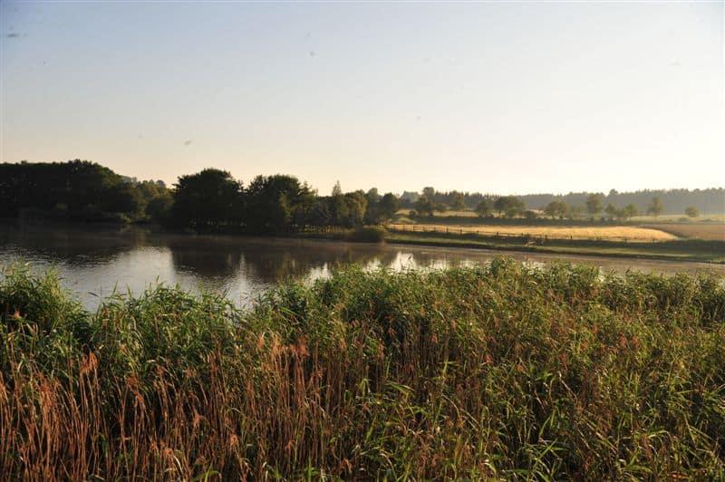 Das Leben am Langen Teich - Landschaften voller Leben 244