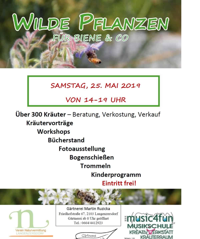WILDE PFLANZEN Langenzersdorf - Nützlinge brauchen unsere Hilfe 232