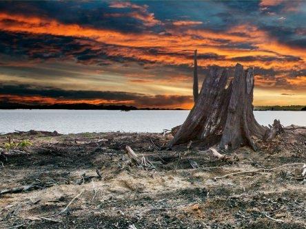 Count-Down am Xingu V - über den Kampf gegen Megastaudämme und Korruption in Brasilien. Filmabend mit Gespräch. 310