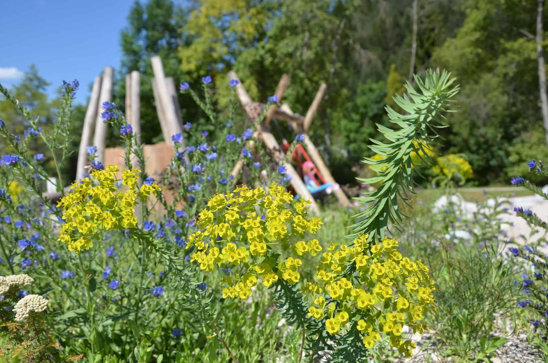 Vortrag Naturnahe Gärten 151