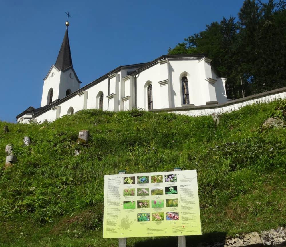 Schöpfung erleben im Loibltal/Brodi 106