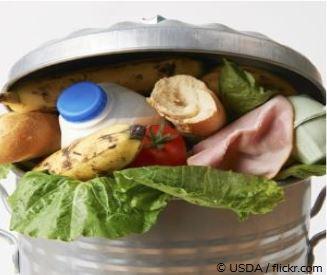Food Waste – Essen für den Müll? 222