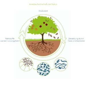 Ratgeber Nachhaltigkeit 1
